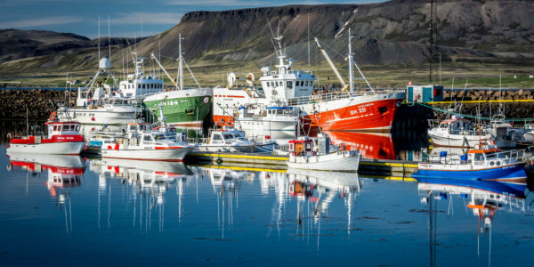 fishing-in-iceland-7