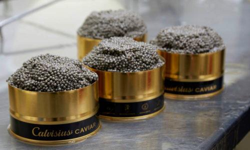 Manhattan Cricket Club Debuts Calvisius Caviar Service_PROMO