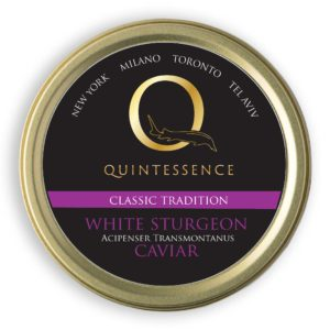 Q Classic TraditionS