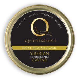 Q Siberian ClassicS