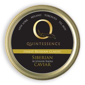 Q Siberian Classic